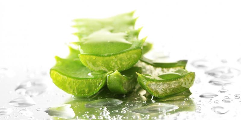diététique - digestion - aloé vera - cosmétique - peau
